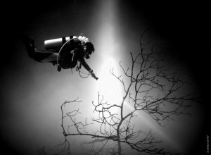 """Cenote diving """"The Pit"""""""